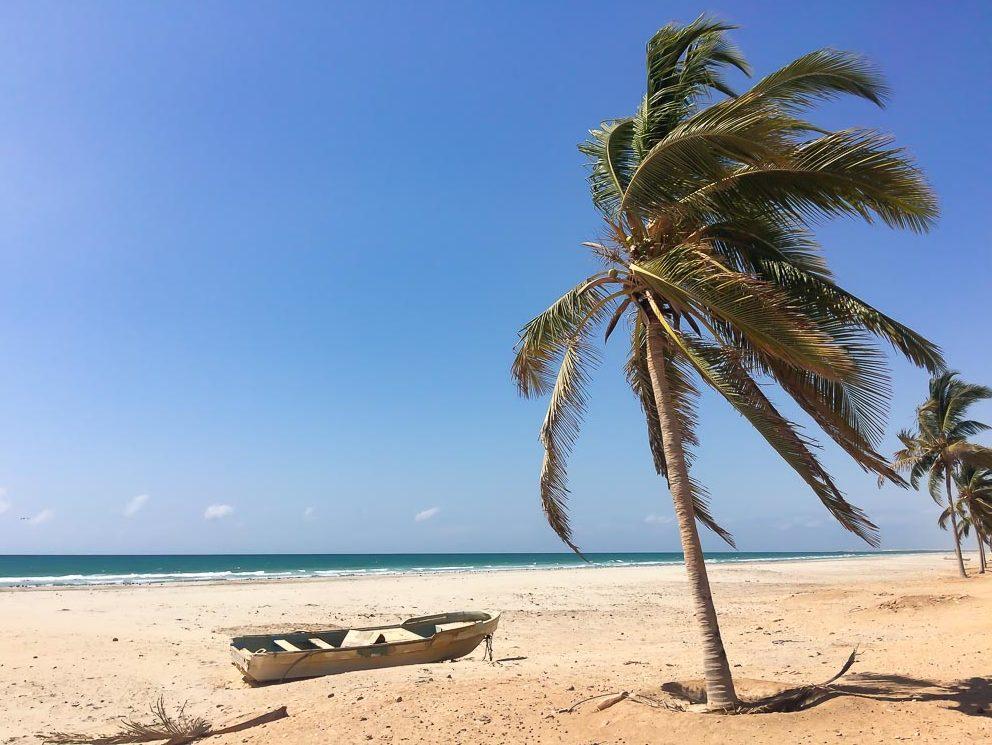 einsamer strand mit palme und fischerboot
