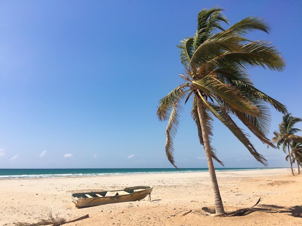 einsamer strand mit palme und boot