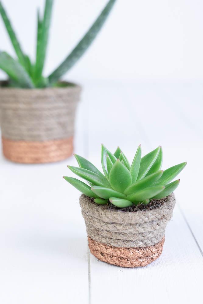 Blumentopf Upcycling mit Seil und Kupfer Acrylfarbe